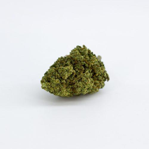 CBWEED | HemporioEmilia | Cannabis legale | Castel San Pietro Terme | Bologna