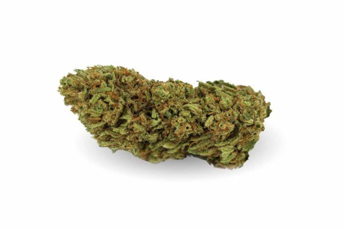 og-kush CBWEED | HemporioEmilia | Cannabis legale | Castel San Pietro Terme | Bologna