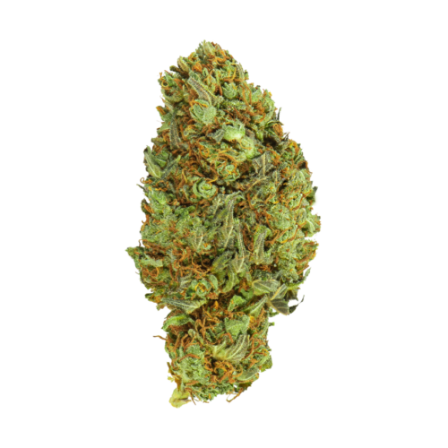 Canapa legale Galaxy Kush Mary Moonlight|