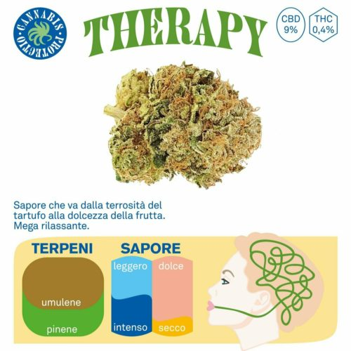 Therapy - Cannabis Protectio